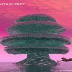 Solaris-Mountaintree.jpg