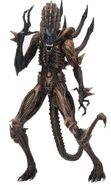 ScorpionXenomorph