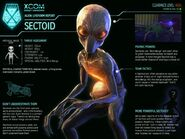 Sectoid 2012