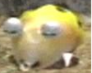 Yellow Bulborb