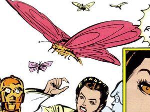 Antarean Poisonous Butterfly.jpg