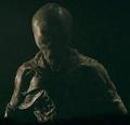 Alien (The Recall)