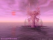 Solaris-Symmetriade