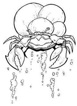 Sink Crab.jpg