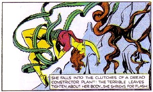 Constrictor Plant