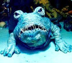 Frog-DogBubo.jpg