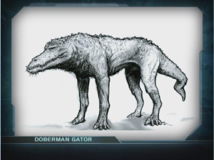 Doberman Gator