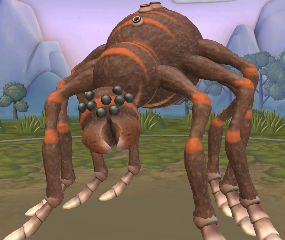Baboonspider