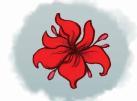 Sogflower