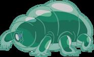 Water Bear (Beta)