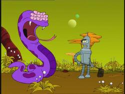 Purple Fruit Snake.jpg