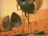 Martian Waterseeker
