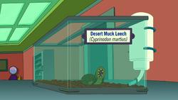 Desert Muck Leech.png
