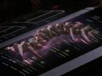 Dark Matter Lifeform (Star Trek)