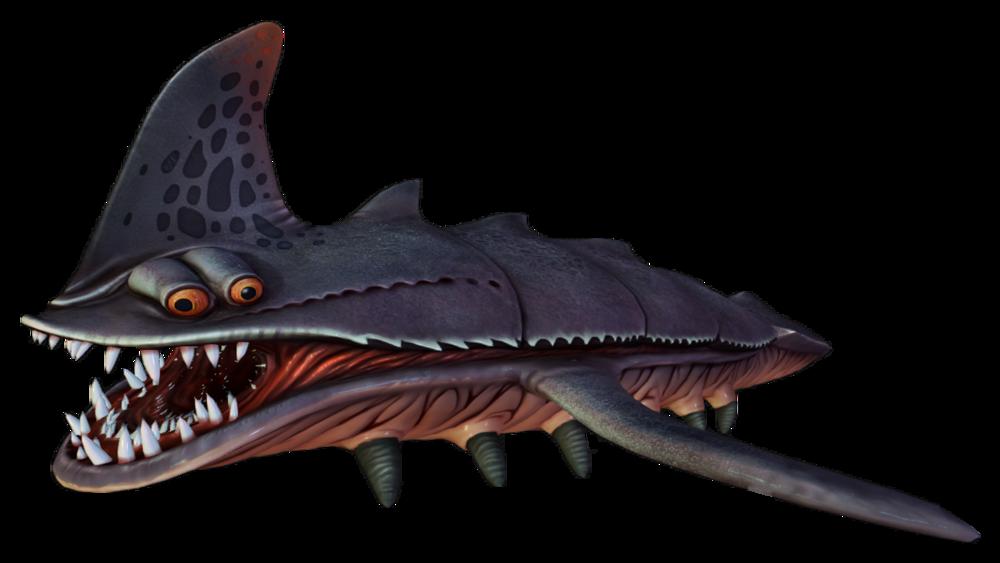 Sand Shark