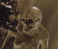 Newborn alien.jpg