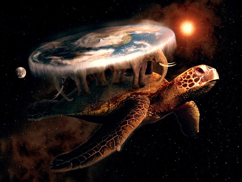 Star Turtle
