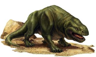 A common dewback.