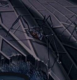Space spider.jpg
