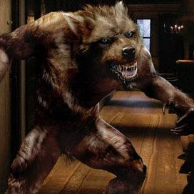 Lycanthrope (Doctor Who)