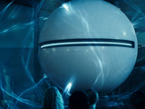 The Sphere's Species