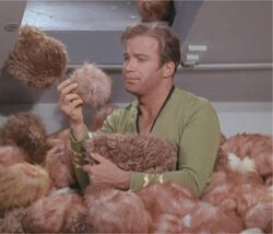 "Captain Kirk and ""some"" Tribbles located on the Enterprise in 2268"