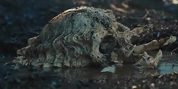Pred-skull-1.png