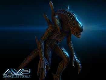 Alienwarrior.jpg