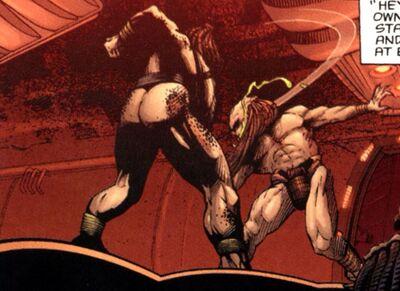 Predators fight-1.jpg
