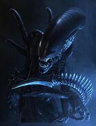 01-orc darkportal
