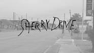 SherryDrivelogo