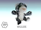Ollie the Snow Leopard
