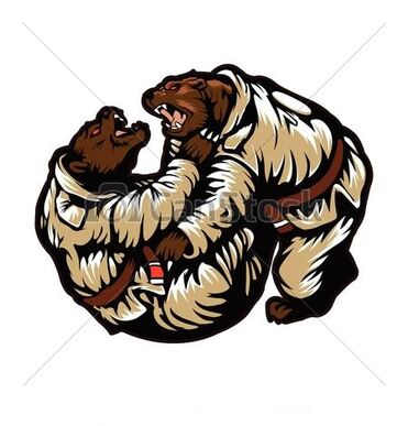 Judo Bears.jpg