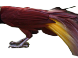 Greater Bird-of-paradise