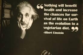 AlbertEinsteinthevegetarian.png