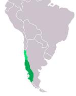 Chilean Cat range.png
