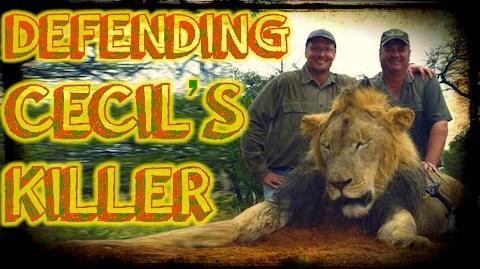 In Defense of Cecil the Lion's Killer