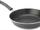 The Pan