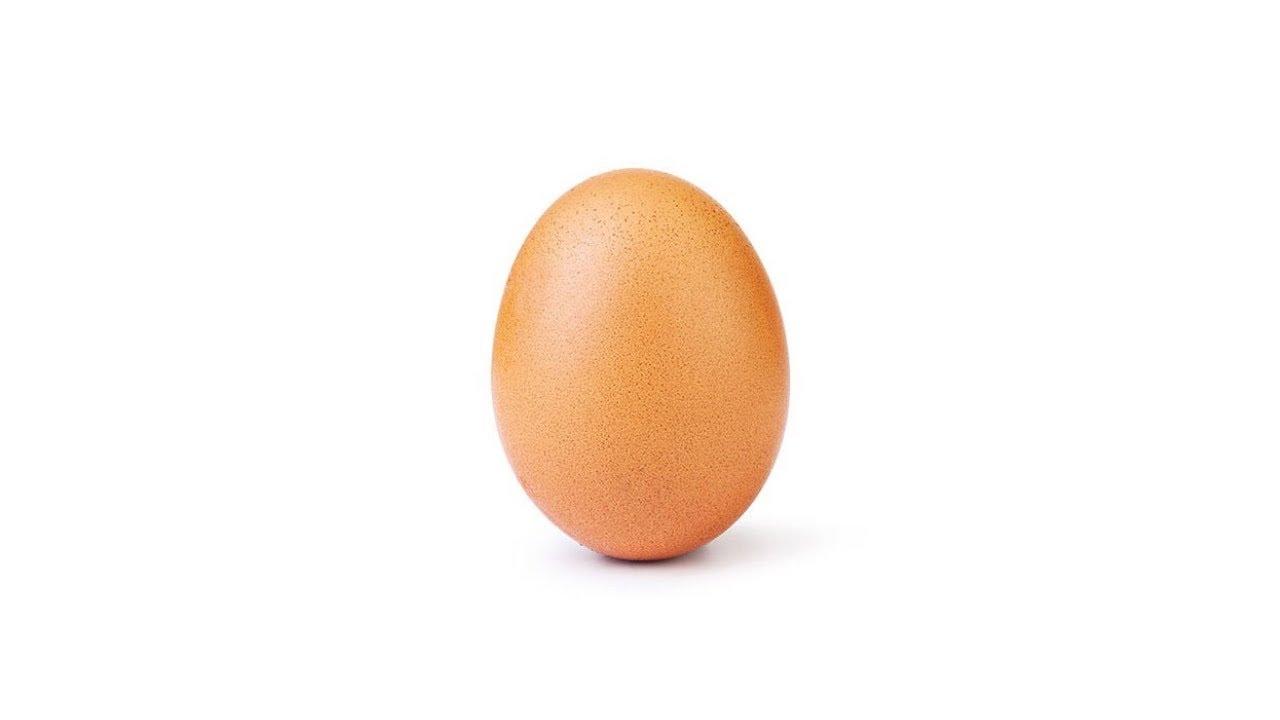 Eggverse