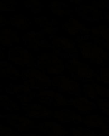 Screen Shot 2020-03-30 at 7.53.19 PM.png