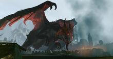 1372455032 dragon 4.jpg