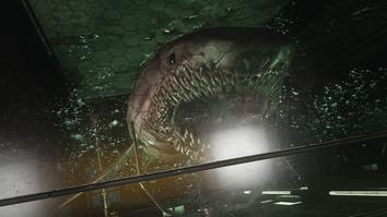Shark AW.png