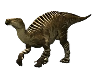 North American Iguanodon