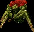 Plant Spider (FFIX)
