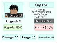 Organs Upgrade 3 Card