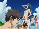 Beach Episode/Anime and Manga