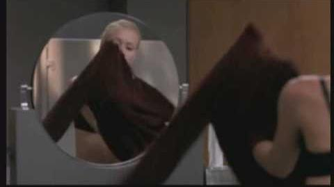 Ally_McBeal_and_The_Unisex_Bathroom