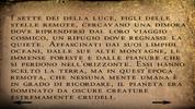Bull (3)