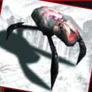Arachnocid.jpg