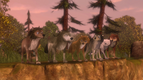 Alpha and Omega 2 A Howl-iday Adventure (233)